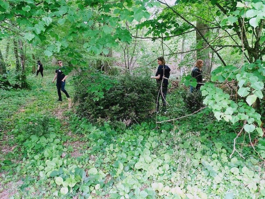 Course d'orientation Team building Fontainebleau, Barbizon 77